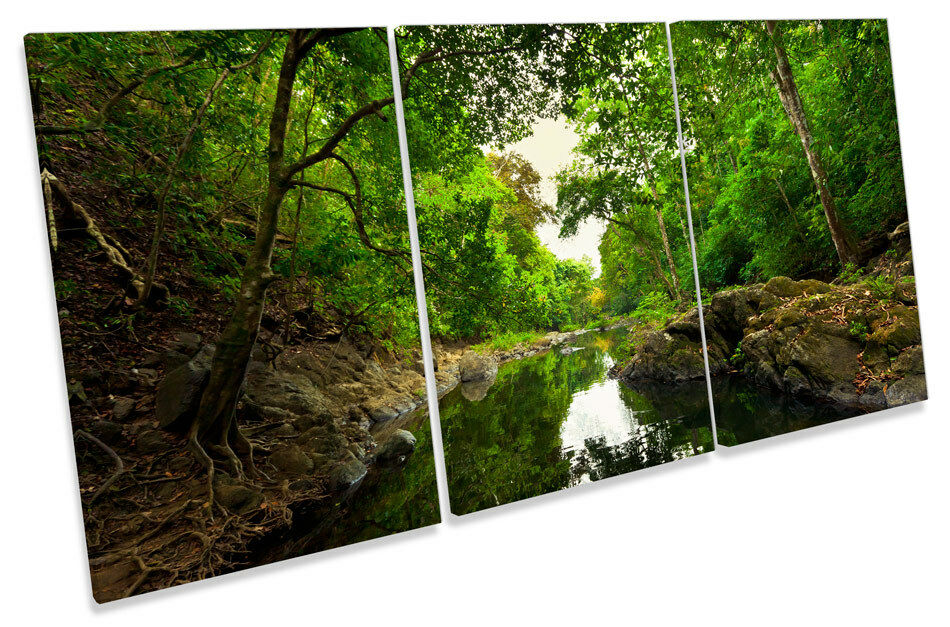 Grün Forest River Woods  CANVAS Wand Kunst TRIPLE Drucken Bild