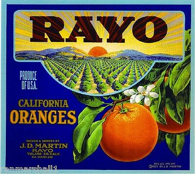 Porterville Tulare County Pocahontas Orange Citrus Fruit Crate Label Art Print