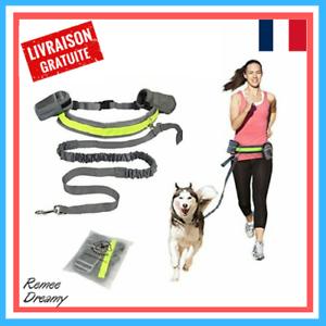 Laisse-Jogging-Chien-Kit-Course-a-Pied-Randonnee-Ceinture-Elastique-Extensible