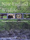 New England Wildlife: Habitat, Natural History and Distribution by Richard M. DeGraaf, Mariko Yamasaki (Paperback, 2000)