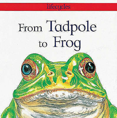 """""""AS NEW"""" Stewart, David, From Tadpole To Frog (Lifecycles), Paperback Book"""