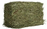 Oxbow Animal Health Western Timothy Hay For Pets, 9-pound , New, Free Shipping on sale
