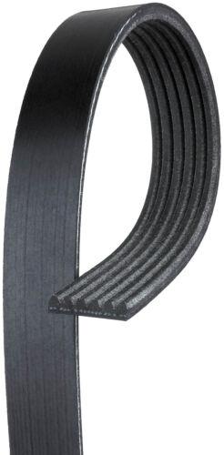 Serpentine Belt-Premium OE Micro-V Belt Gates K060407