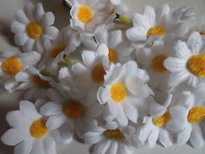 Details Zu 50 Margeritenblüten Weiß 4 Cm Tischdekostreudeko Floristik Basteln