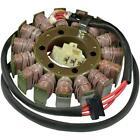 Ricks Motorsport Electric - 21-229 - Stator