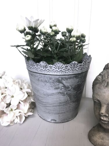 Pflanztopf Brocante Eisen Metall shabby Vintage Grau Topf NEU