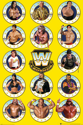 WWE Wrestling Legends Stars Large Poster Art Print Gift A0 A1 A2 A3 A4 Maxi