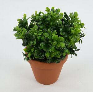buchsbusch 22cm im topf ar k nstliche pflanzen buxbusch kunstpflanzen 4260355151970 ebay. Black Bedroom Furniture Sets. Home Design Ideas