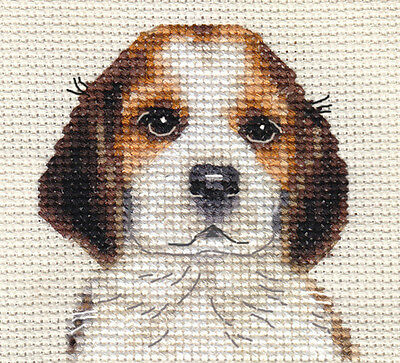 BEAGLE PUPPY, dog ~ Full counted cross stitch kit, with all materials