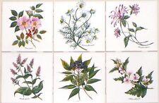 """Herb Botanical Flower Ceramic Tiles set of 6 of 4.25""""  Kiln fired Back Splash"""