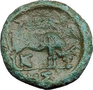Pella-Macedonia-158BC-Ancient-ANCIENT-Rare-Greek-Coin-Athena-Cult-Bull-i38715