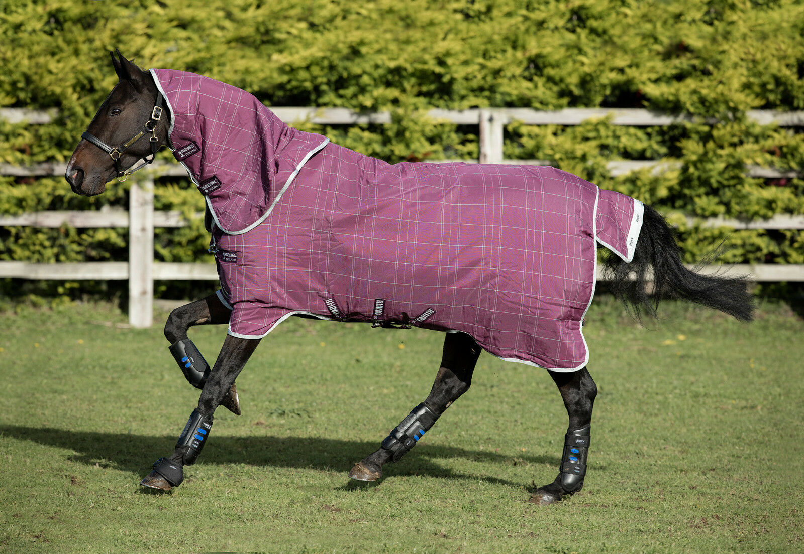 Horseware Rhino ORIGINAL TURNOUT PLUS Rug Tough Lightweight 0g Berry 5'6