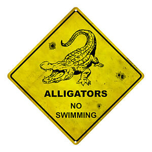 alligators no swimming tin sign alligators warning sign alligator