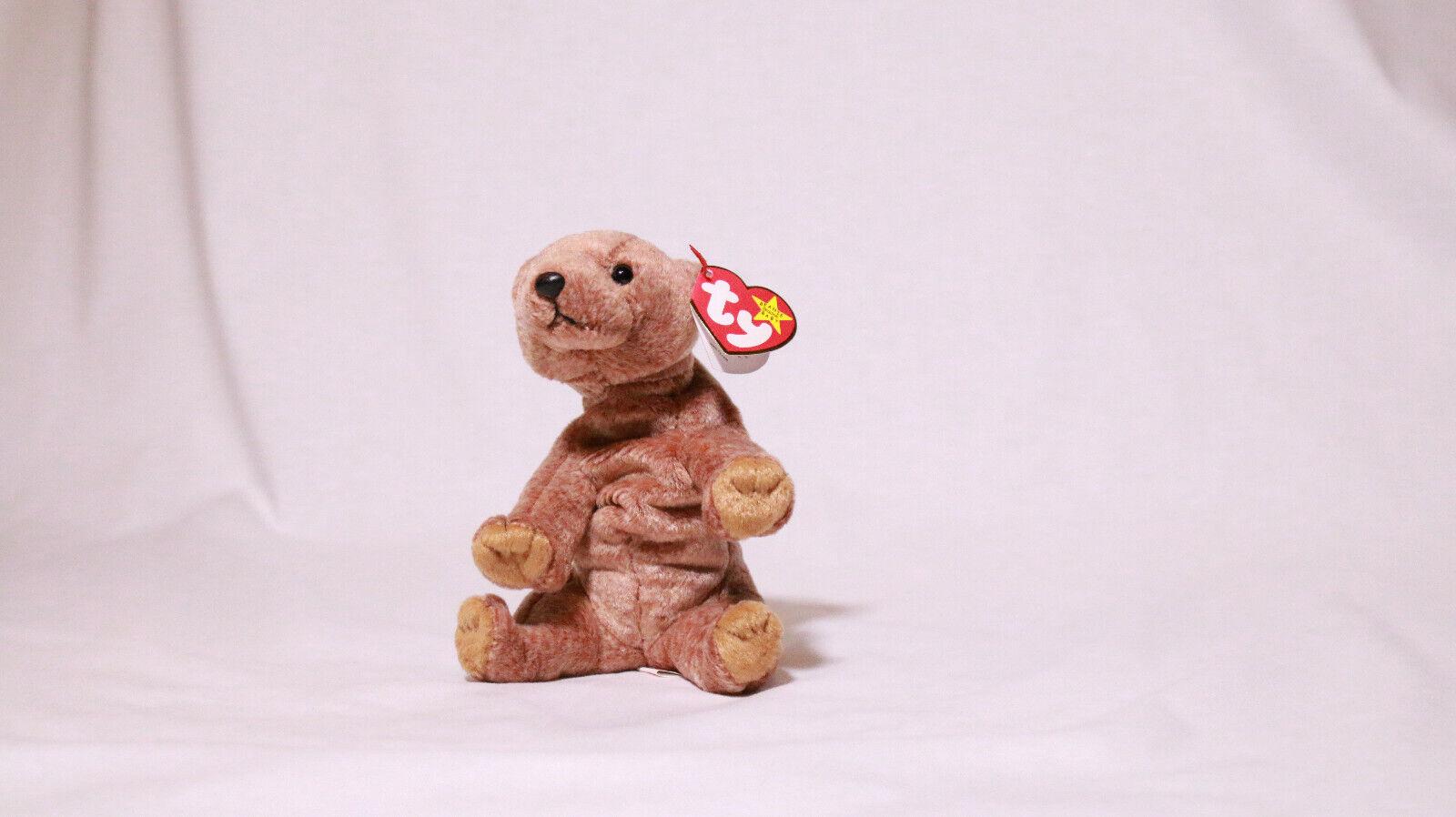 Pecan Bear Rare Errors -Beanie Baby