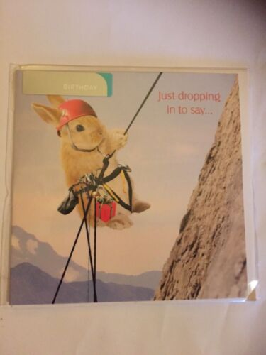 In the swing rabbit abseiling just dropping in to say Happy  Birthday card