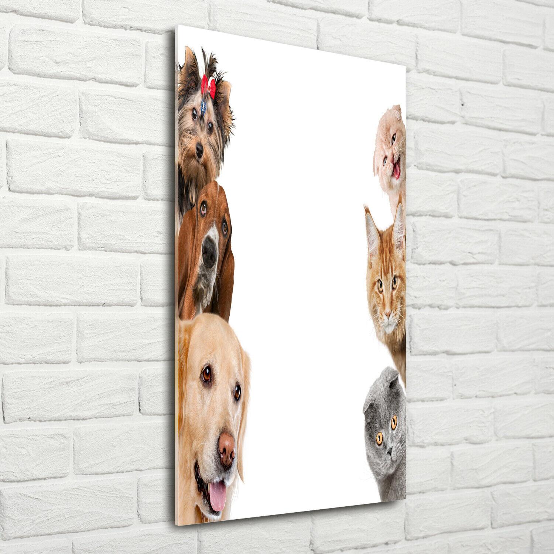 Wand-Bild Kunstdruck aus Acryl-Glas Hochformat 70x140 Hunde Katzen