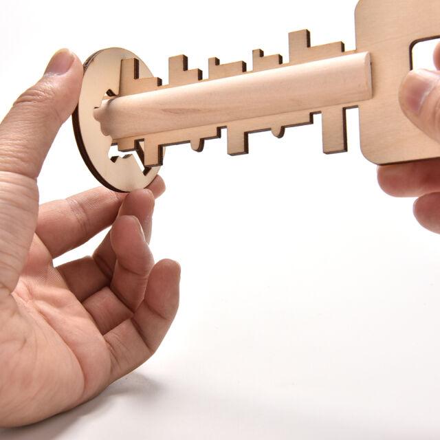 IQ Test Toys Intelligence Developement Game Burr Puzzle Unlock Key Magic BDAU