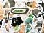 miniatuur 2 - 50 Fun Cat Kitty Pet Meme Stickers Decals For Laptops Phone Journal Mix Set