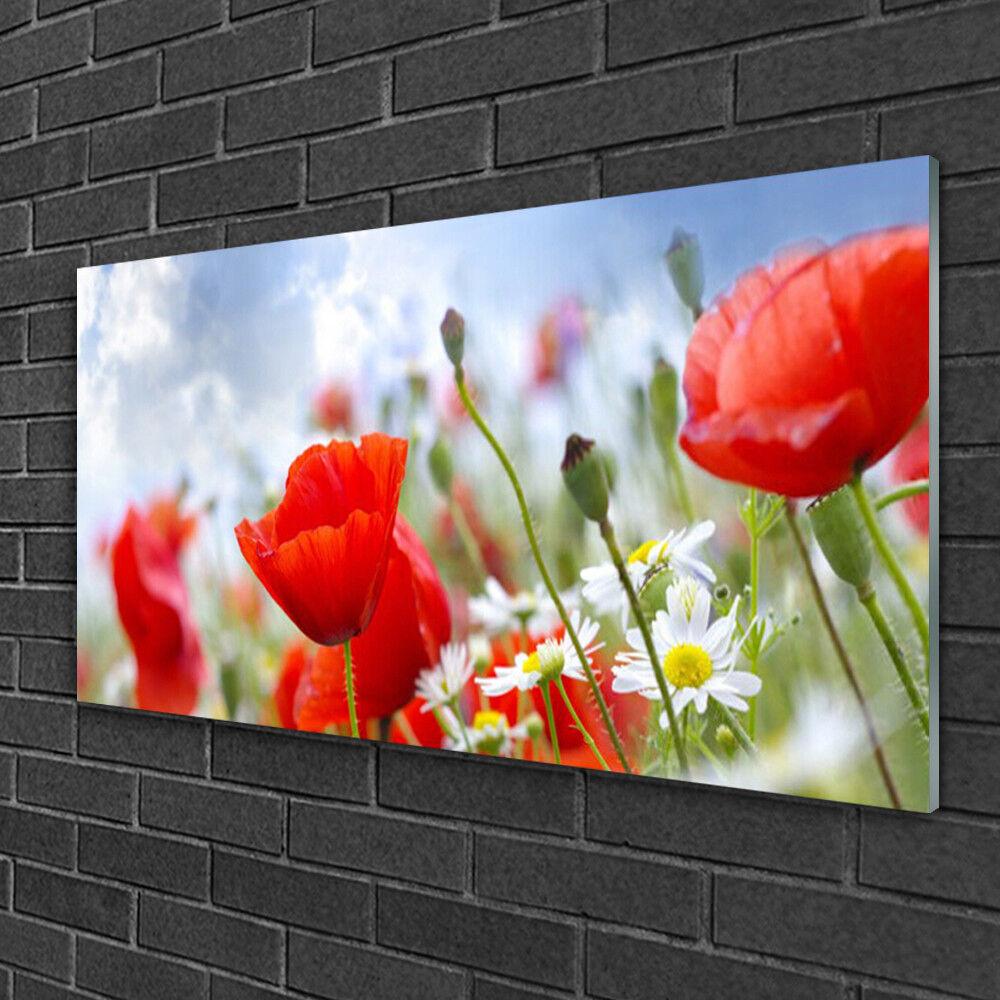Image sur verre Tableau Impression 100x50 Floral Marguerites Pavot