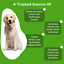 thumbnail 3 - 2 Bottles PROBIOTICS Digestive Enzymes for Dogs Chew Treats 60ct Each PAWMEDICA