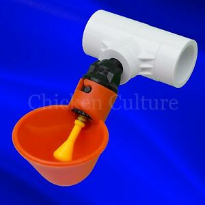 8 Pack Poultry Water Drinking Cups- Chicken Hen Automatic Drinker & Fitting USA!