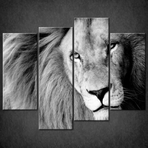 OLD LION BLACK AND WHITE CAT CASCADE CANVAS PRINT WALL ART READY TO HANG