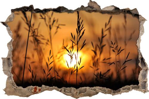schöne Gräser Abend 3D-Look Durchbruch Wandtattoo Aufkleber-Sticker