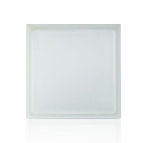 5 Stück Glasbausteine Glasstein Riva Weiss 2-seitig satiniert 24x24x8 cm Bauglas