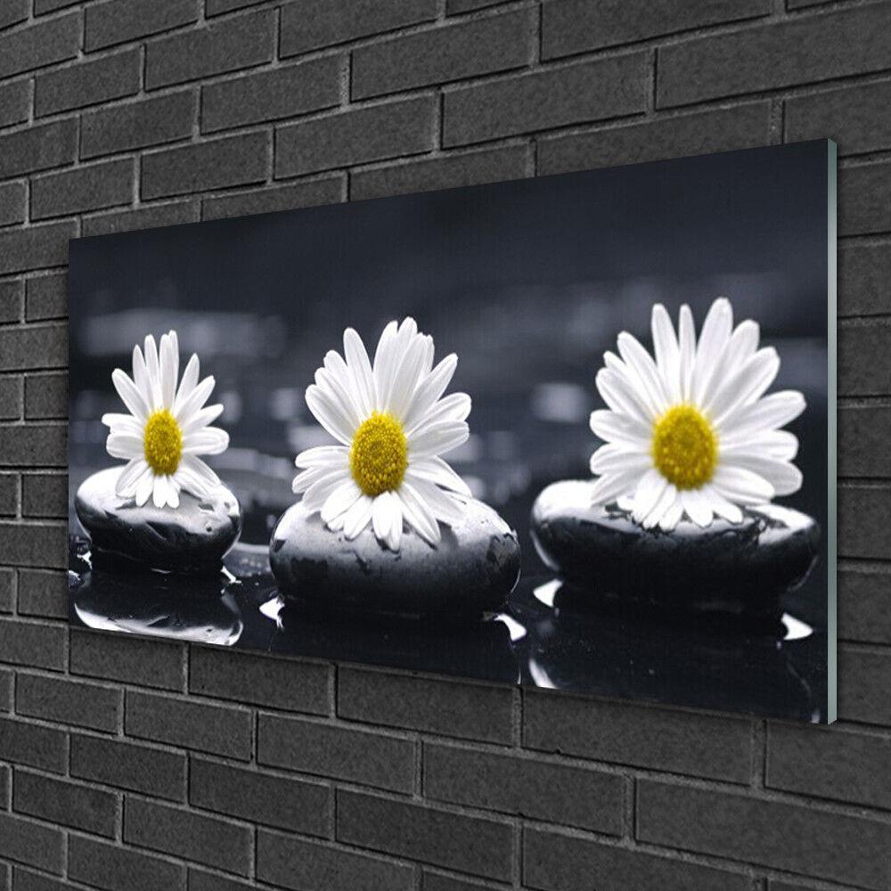 Tableau sur verre Image Impression 100x50 Floral Marguerite Pierres