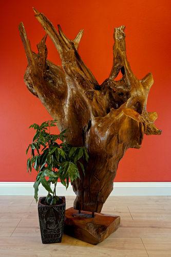 166 cm bois sculpt Teck Racine HOLZKUNST bois flotté Art Teck sculpt STATUE DECO holzobjekt 63b7e1