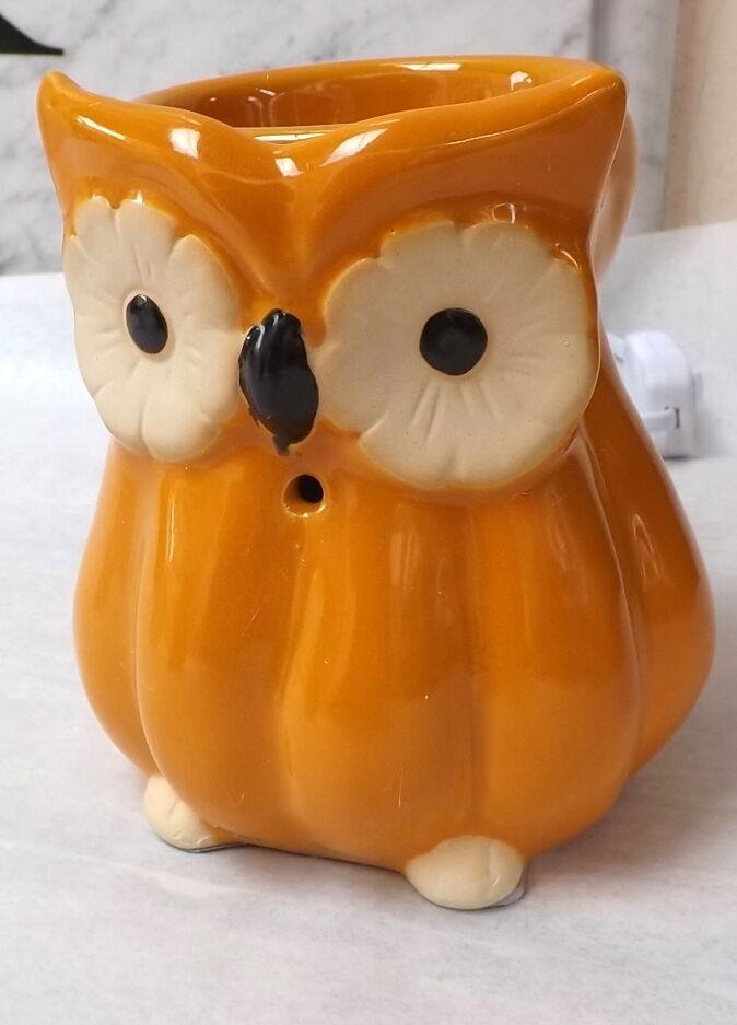 Diffuser Environment Ceramics Porcelain Warm Light Burns Essences Owl Gi