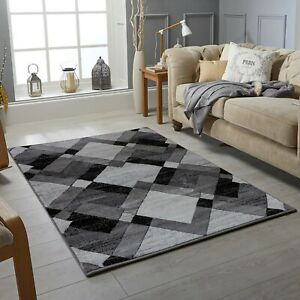 Modern Living Room Area Rugs Large