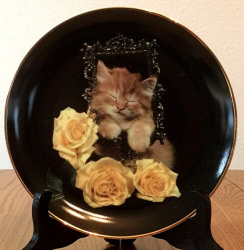 Coming Up Roses Cat Kitten Pretty as a Picture RICHARD STACKS Danbury Mint Plate