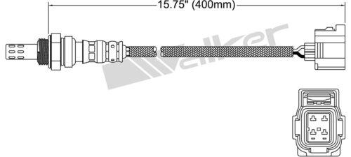 WALKER PRODUCTS 250-24253 OXYGEN O2 SENSOR CATALYTIC CONVERTER EXHAUST NEW