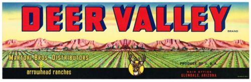 ORIGINAL CRATE LABEL VINTAGE ARIZONA 1950S DEER VALLEY GLENDALE GRAPE WINE