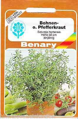 Fèves herbe poivre herbe satureja hortensis 500 Korn Benary semences