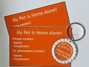 039-My-Pet-Is-Home-Alone-039-Keyring-amp-Cards-by-Curiosity-Crafts