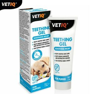 Mark-Chappell-VetIQ-Teething-Gel-Soothing-Relief-Avec-Applicator-For-Puppies-50g