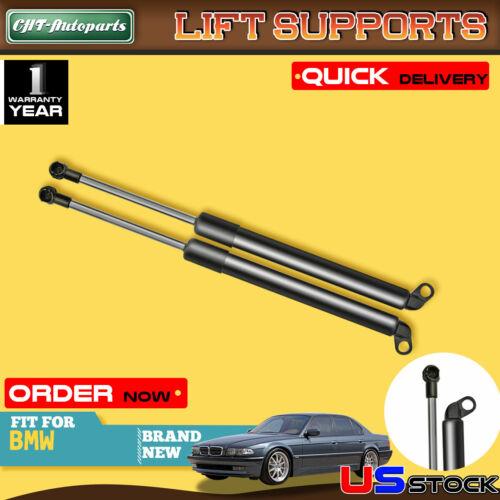 2x Trunk Tailgate Lift Supports Shock Struts for BMW E38 740i 750iL 740iL 94-01