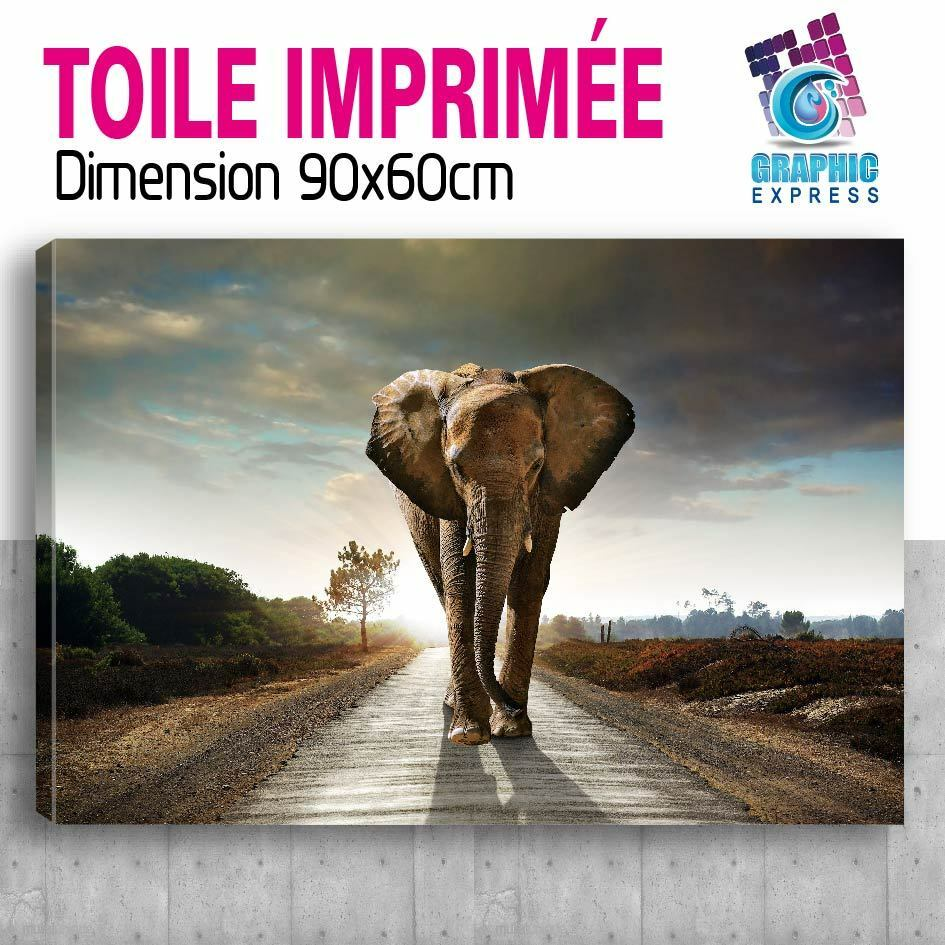 115x105cm - Kit Kit - 6 TOILES IMPRIMEE-TABLEAU DECO MURALE - ELEPHANT - EL10-V6T 89e370