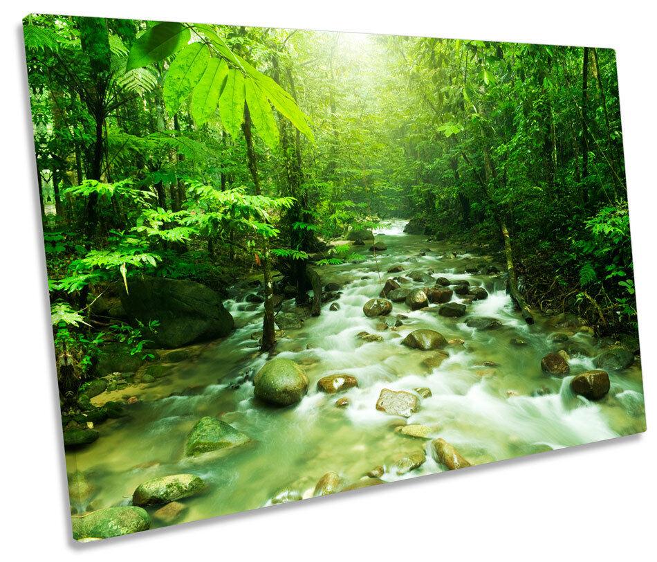 verde foresta PAESAGGIO fiume tela singola singola singola Wall Art Print Picture 82186e