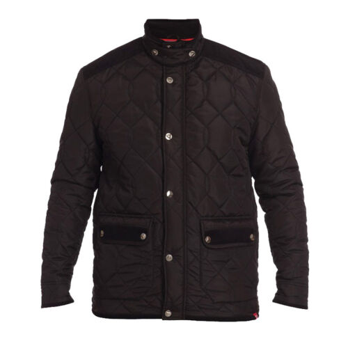 BNWT D555 Mens Designer Branded King Size Lined Quilted Jacket