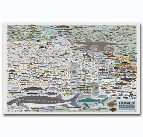 Chart Fresh Water Fish Of Am Print Art POSTER Wall Decoration X-434