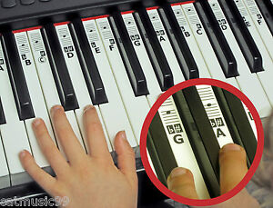 piano keyboard music note stickers learn to play 52 clear keynotes
