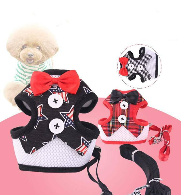 Puppy Breathable Mesh Harness and Leash Set Dog Vest Formal