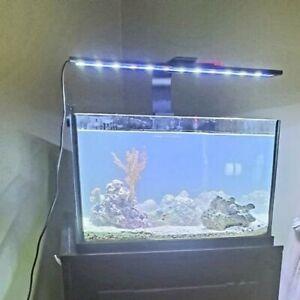 Live Rock Saltwater Rock Aquarium Decoration Live Aquascape Ebay