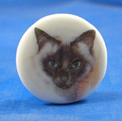 "1""  PORCELAIN CHINA  BUTTON -- SIAMESE CAT"