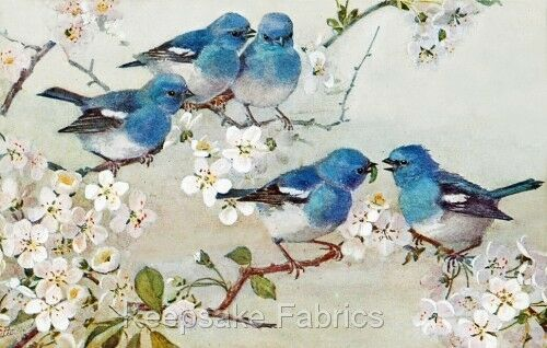 Five Bluebirds Vintage Repro Quilt Block Multi Szs FrEE ShiPPinG WoRld WiDE B3