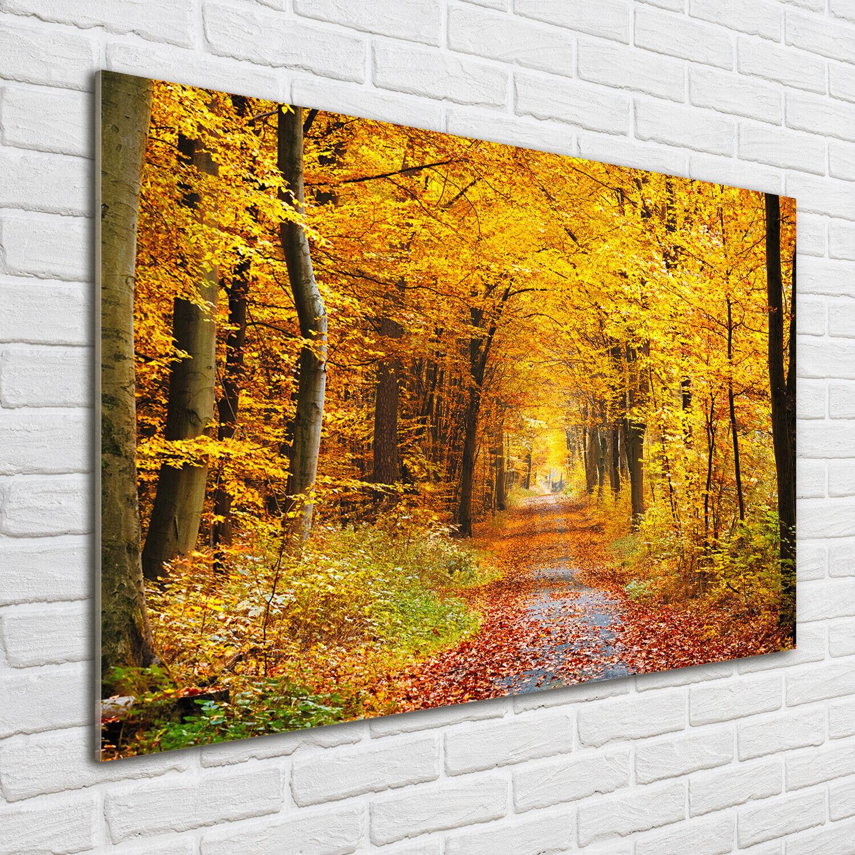 Acrylglas-Bild Wandbilder Druck 100x70 Deko Landschaften Herbstwald