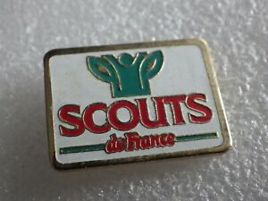 Pin-039-s-Vintage-Collector-Pins-Collection-Adv-Scouts-of-France-Lot-PO106